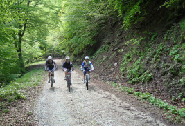 Noleggio mountain bike / Najem gorskih koles / Mountainbike hire / Mountainbike-Verleih